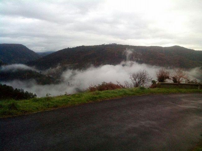 Fog2015 Love_fog