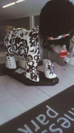 Rino... Na BR3. SAMPAcity Arts Innovation Beautiful :)