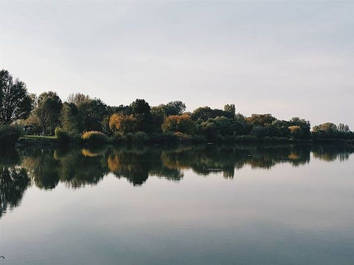 L is for lake.🌾💦🌳 VSCO Vscocam Vscobeau Vsconature Shotsofresh Vscovisuals Visualsoflife Vscohungary 9vaga_skyandviews9 Vscosweden Vscorussia Vscorus Forest Lake Mik Tv_landscapes Liveauthentic 9vaga_dailytheme9 Rsa_ladies Soundofcountry Landscape Tv_travel Tv_living Transfer_visions Reflection transfer_visions_nm2 hiyapapayaphotoaday wildernessculture 9vaga_dt_beauty9 moodysnap
