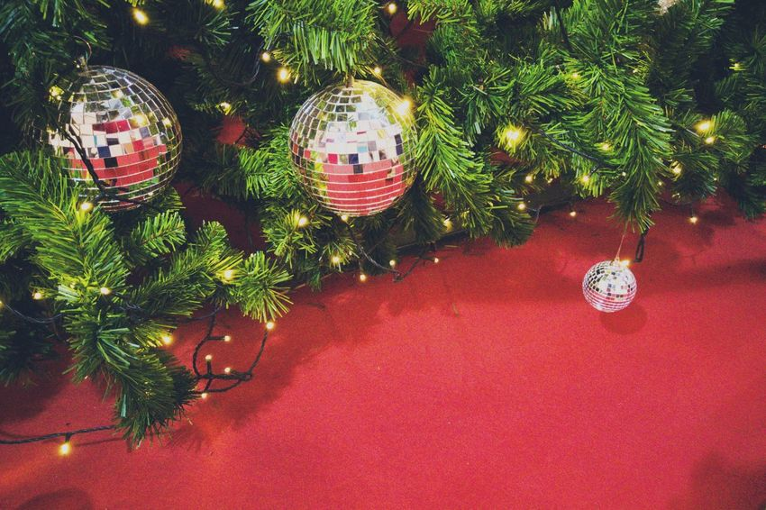 Christmas tree with decorations With red background Red Red Color Ball Green Color Green #Background #decoration #christmastime #Christmas #ChristmasTree Equipment #happy Decoration Christmas Decoration Christmas Celebration Christmas Tree Tradition Christmas Ornament Close-up Tree