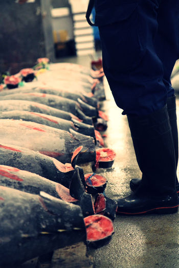 I am not too sure if they keep this tradition when the fish market is moved to a new place. Business Business Trip Buy And Sale Culture Documentary Photography Early Morning Fish Japanese  Japanese Food Midnight Sashimi  Travel Photography Tsukiji Fish Market Tuna Auction Wet Market 築地