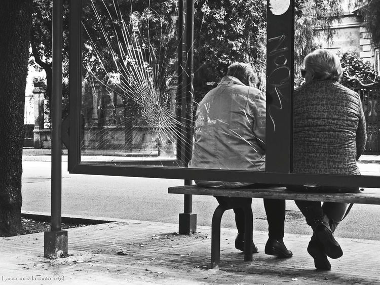 More on https://www.facebook.com/leccecomelacantoio/ Leccecomelacantoio Lecce City Lecce - Italia Lecce Lecce (Italia) Lecce B/w Humansoflecce Friendship Cracks Bnw Bnw_captures Bnwphotography Bnw_collection Bnw_life Bnw Photography Bnw Photography Blackandwhite Black And White Black & White Blackandwhite Photography Streetphotography People People Watching People Photography People Together