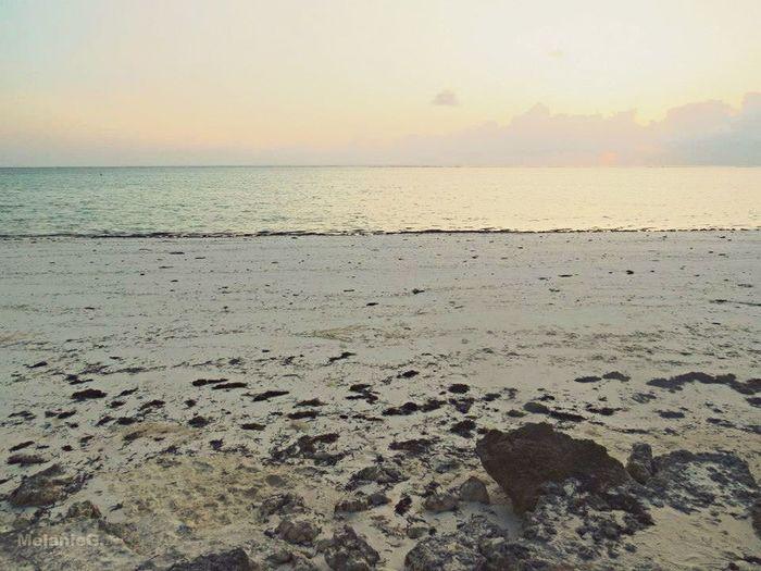 Zanzibar Plage Mapenzibeach Plagedelamour Mer Sable Blanc Eau Turquoise Paradis