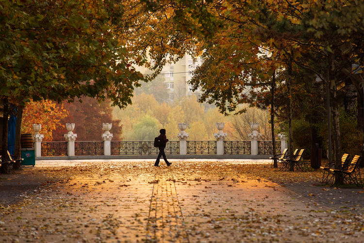 Man walking on footpath in city during autumn
