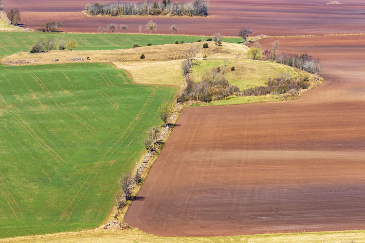 Beautiful landscape view with fields in spring
