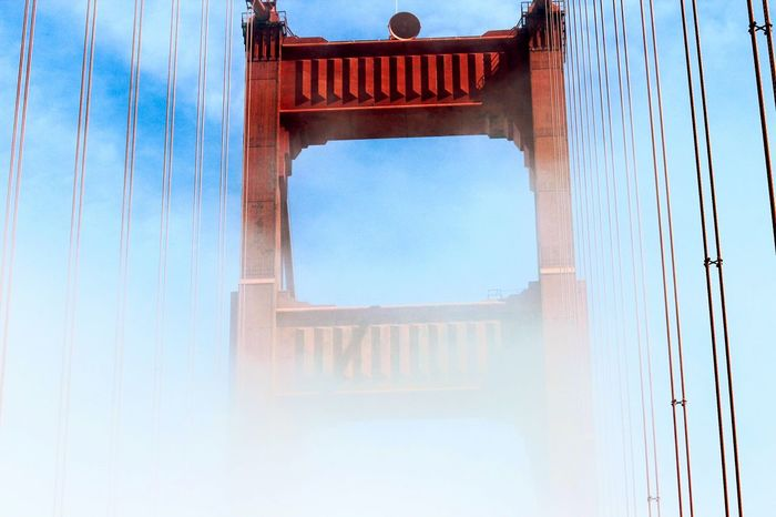 Live For The Story never lose sight of your goals Built Structure Low Angle View Outdoors Travel Destinations City Sky Amazing View Scenics Vacations AmeturephotographyGolden Gate Bridge Cloud - Sky Color Photography Moments Dramatic Sky AspiringPhotographer EyeEmNewHere Sunlight San Francisco San Francisco Bay San Francisco, California San Francisco Ca Amazing Beauty Golden Gate