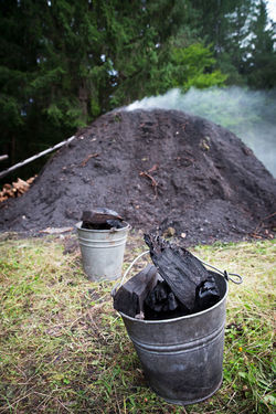Charcoal Production Smoke Traditional Crafts Black Color Bucket Charcoal Charcoal Pile Charcoal Production Day Environment Field Focus On Foreground Forest Grass Growth Landscape Log Making Charcoal Nature No People Outdoors Plant Traditional Tree Wood - Material