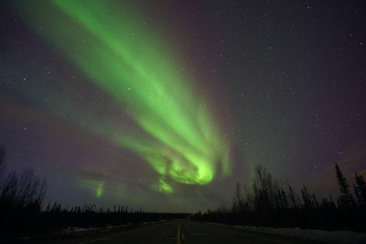 Idyllic shot of aurora polaris