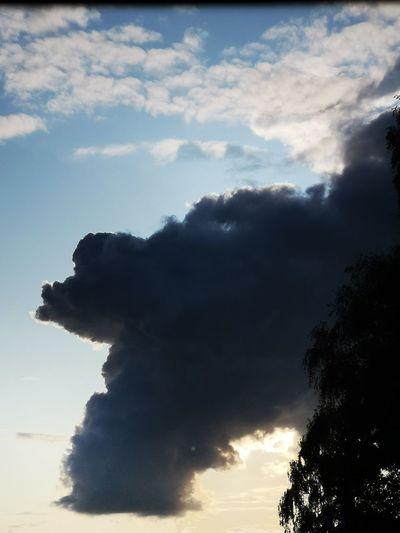 Wolken Und