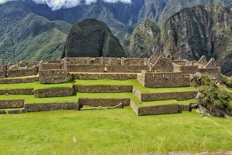 Machu Picchu Mountain Tree Terraced Field Ancient Civilization Field Grass Green Color
