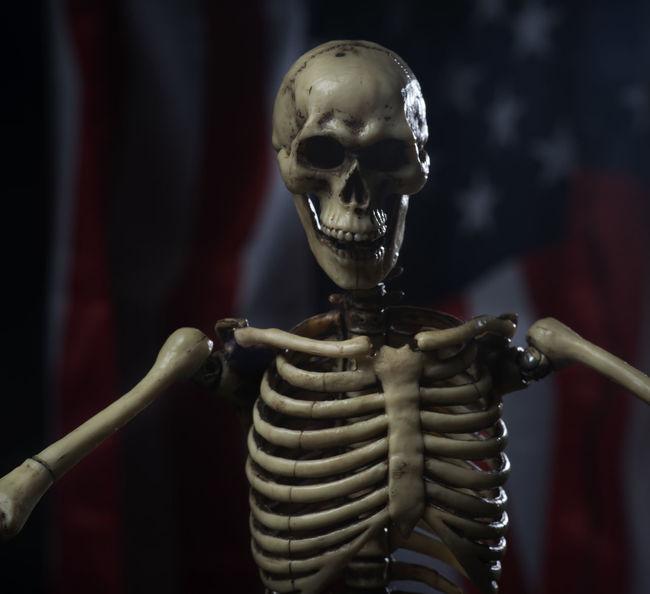 Close-up First Eyeem Photo Halloween Indoors  Pollen Skeleton Skeletons USA