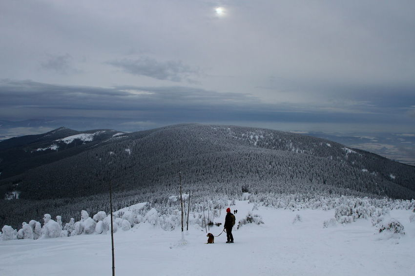 Adventure Beauty In Nature Cloud - Sky Cold Temperature Day Landscape Leisure Activity Lifestyles Mountain Nature One Person Outdoors Real People Scenics Ski Holiday Skiing Sky Snow Snowboarding Sport Tranquil Scene Tranquility Vacations Weather Winter