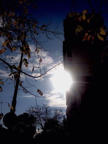 Sunshine Sun Belgrano Argentina