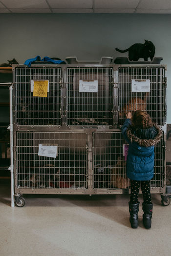 Rear View Full Length Real People One Person Indoors  Lifestyles Domestic Animals Cage Pets Group Of Animals Standing Shelter Cats Child