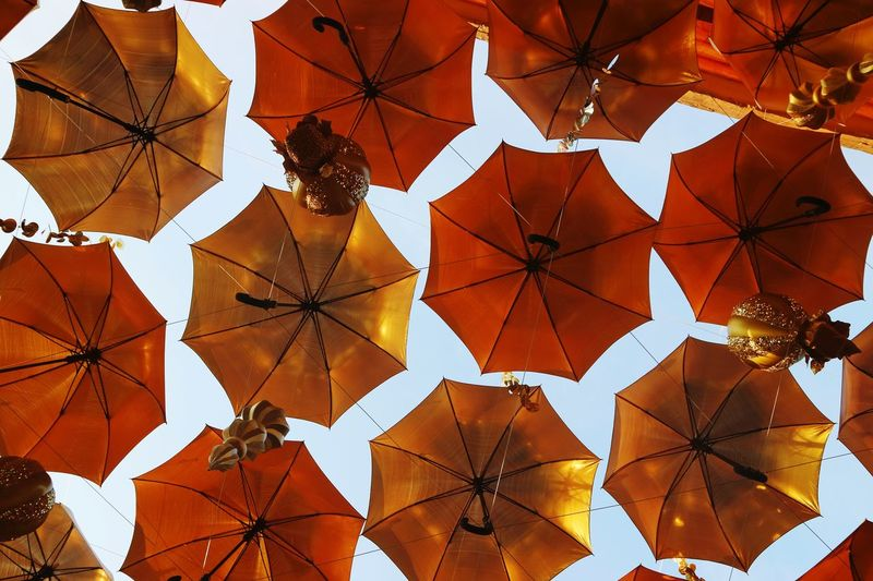 Low angle view of umbrellas hanging on ceiling