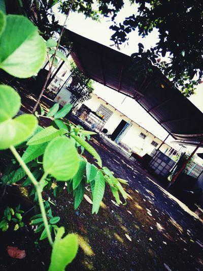 trabajos en la hacienda. First Eyeem Photo
