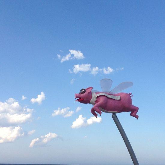 pigs do fly !!! Art Sculpure