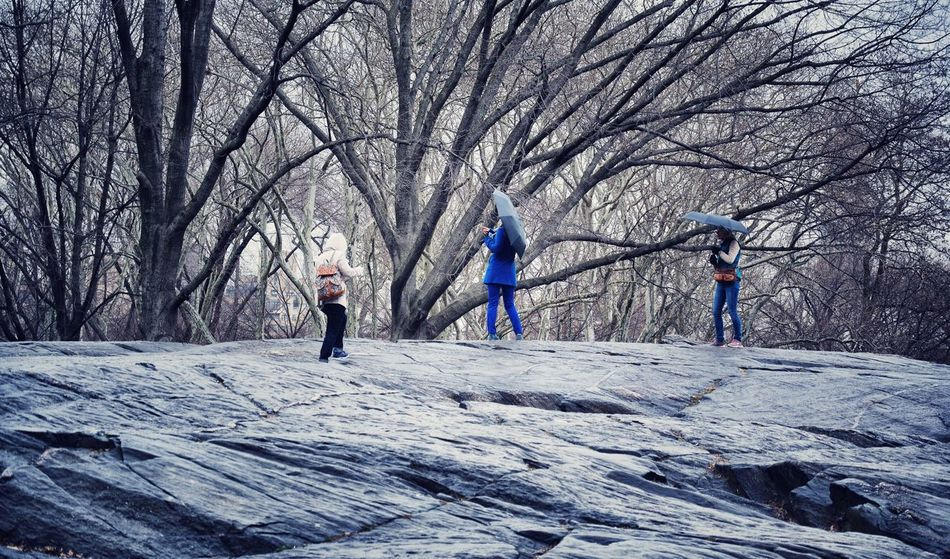 Climbing The Rock Rainy Days People Watching Central Park Scenery Shots EyeEm Best Shots - People + Portrait Cobalt Blue By Motorola