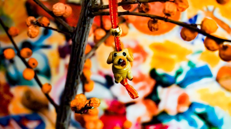 Hello world 🐶✨ Animal Animal Wildlife Animal Themes Close-up No People Focus On Foreground Insect Hanging Decoration Day Multi Colored Creativity Full Frame Selective Focus One Animal Orange Color Art And Craft