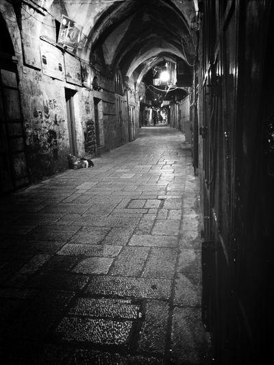 صورة من الواد ومن القدس الشريف