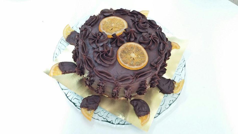 Cake Pastel Chocolate