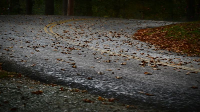 Road To Nowhere Curves And Lines Yellow Line Fall Roads Leading Lines Leafs On The Ground