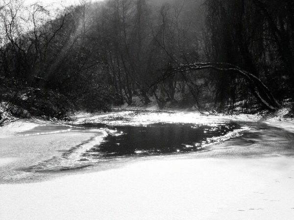 Tree Nature Winter Beauty In Nature Snow Tranquility Day No People Outdoors Cold Temperature Landscape River Frozen Frozen River Frozen Nature Hungary Cold Water Ice