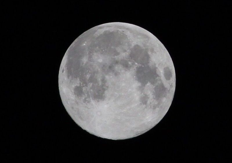 Moon Moon Surface Planetary Moon Night Astronomy Majestic Full Moon Circle Tranquility Scenics Space Exploration Discovery Space Outdoors Professional Royal Canon700D Indore India The Week On EyeEm