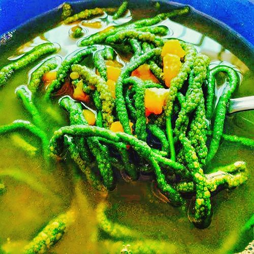 Dinengdeng Ilocossur Tourist Onlyinthephilippines🇵🇭 Onlyinthephilippines Ilocano Ilocanofood Ilocano Dish Ilocanocuisine Dish Of The Day Cuisine Philippines Filipino Filipino Food Philippinecuisines Philippinedish Vegetable Vegetables Vegetable Soup Soup Vegan Vegetarian Food High Angle View Close-up Green Color Food And Drink Served Ready-to-eat Dish
