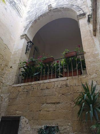 Corti Lecce Salento Italy🇮🇹 Window Box Architecture Building Exterior Built Structure Plant