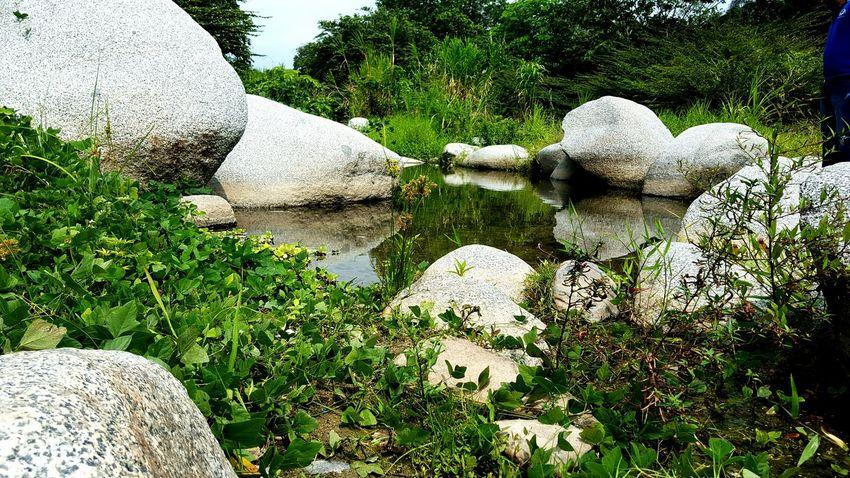 Río seco por la sequía. Fotografías Con El Celular. @fotosconelcel Pictures With Cell