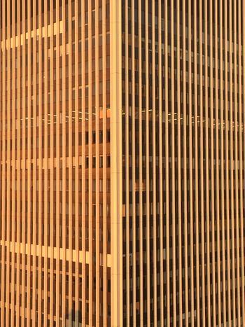 Corporate Architecture Fassade Sunlight