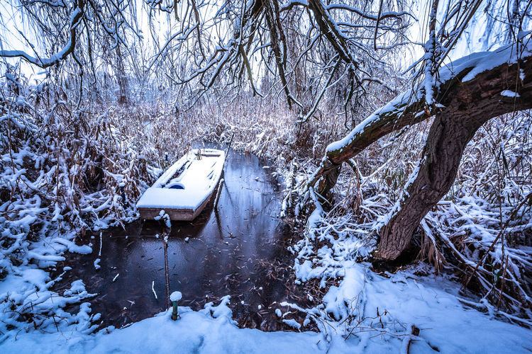 Boat Tree Trunk Bare Tree Branch Natural Ice Frozen Frost Waterfront Riverside River Outdoors Snow Plant Beauty In Nature Tree Cold Temperature Winter No People Nature Day Tranquility Mode Of Transportation Transportation Water
