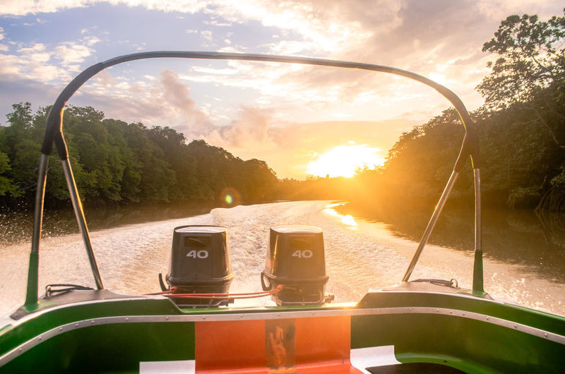 The Traveler - 2019 EyeEm Awards The Great Outdoors - 2019 EyeEm Awards Mangrove Mangrove Forest River Mode Of Transportation No People Nature Tree Sunset Cloud - Sky Sunlight Sky Plant Transportation Water Day Outdoors Travel On A Boat Boat Still Life Refreshment Relaxing Tropical