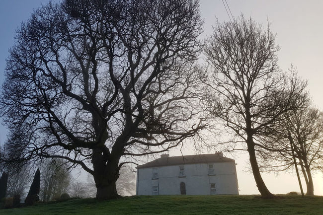 Bare Trees Building Exterior House On A Hill Misty Morning Outdoors Tree