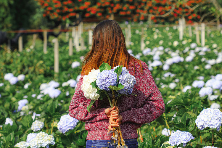 Rear view of mid adult woman holding flowering plants at farm
