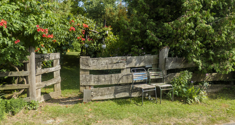 Boundary Fence Grass Land Old Paling Seat Village Village Life Wood - Material