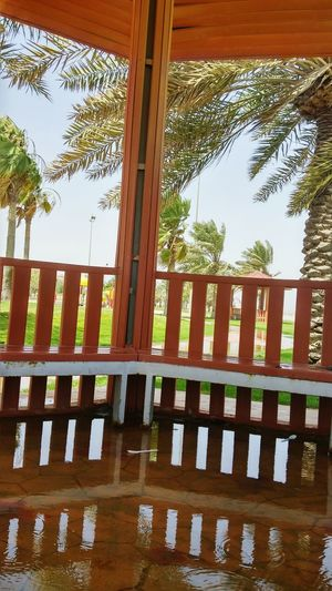 Tree Tree Palm Tree Wood - Material No People Architectural Column Sky Day Outdoors Picket Fence Pavilion Architecture