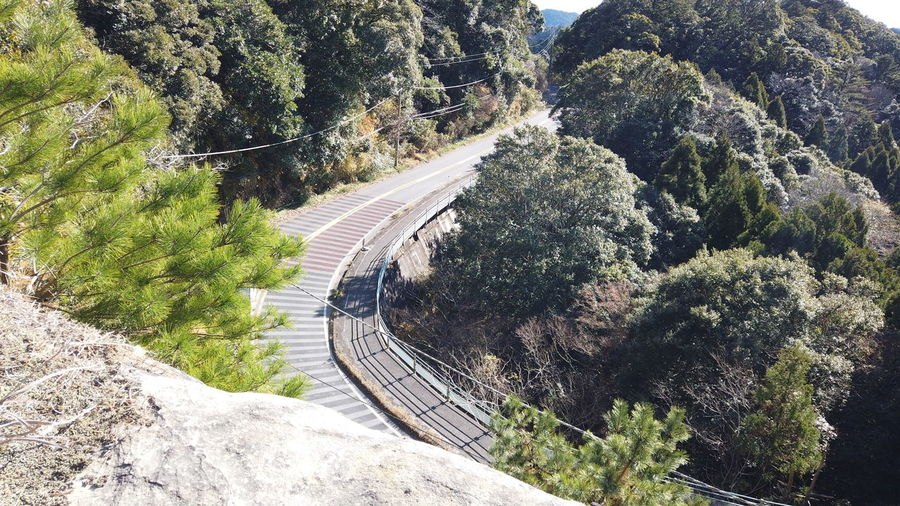 Japan Travel Destinations Countryside Lifestyles Japan Travel Japan Trip  Landscape Tree Plant Transportation Road Nature Day No People Direction High Angle View Growth The Way Forward Curve Mountain Scenics - Nature Connection Beauty In Nature Outdoors Mode Of Transportation Environment Green Color