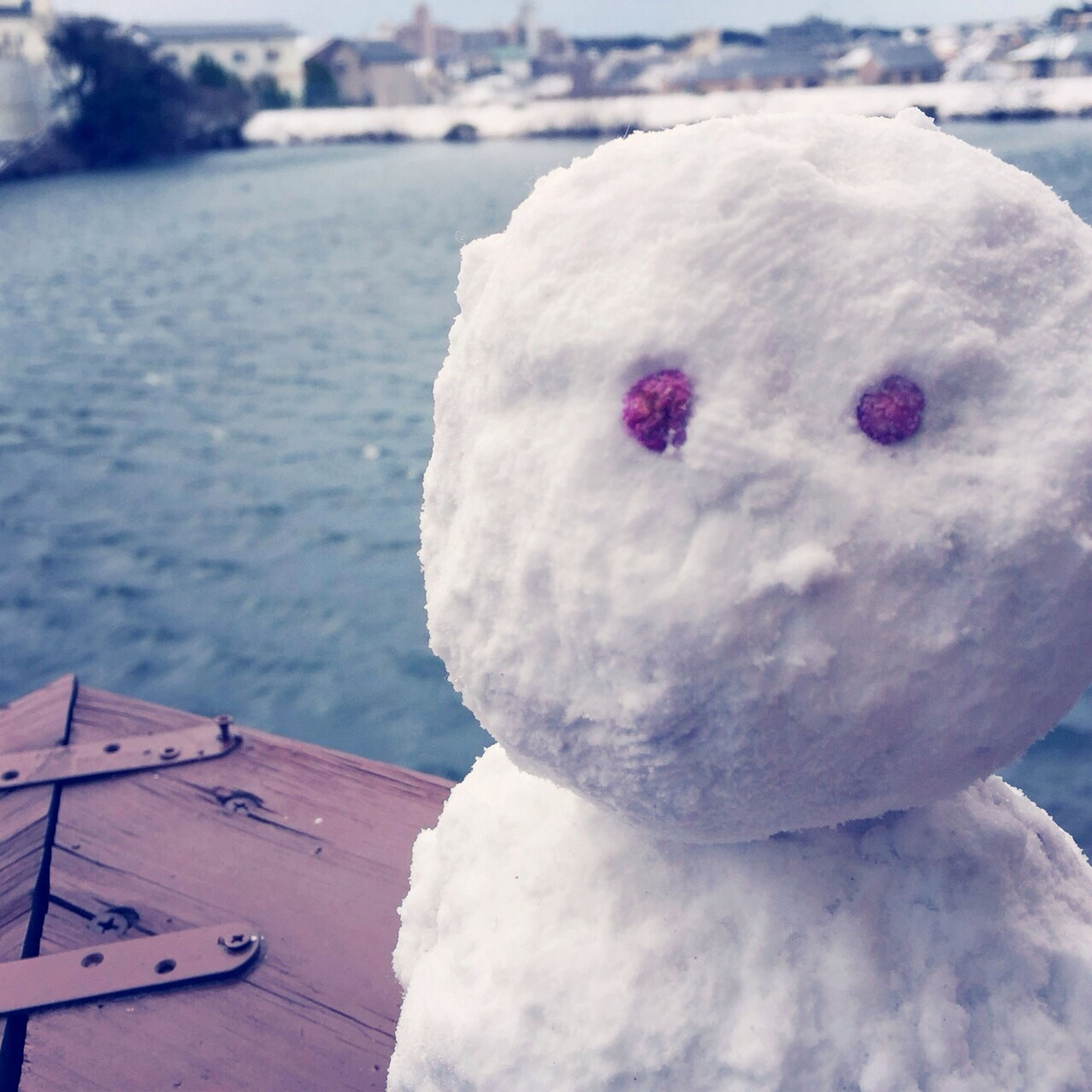 focus on foreground, water, close-up, white color, cold temperature, winter, frozen, snow, day, outdoors, no people, sea, weather, nature, high angle view, creativity, animal representation, river, sweet food, art and craft