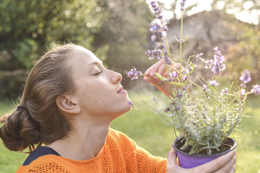 young woman gardening Beautiful Woman Beauty In Nature Blond Hair Close-up Day Florist Flower Flower Head Focus On Foreground Fragility Freshness Front Or Back Yard Growth Holding Leisure Activity Lifestyles Nature One Person Outdoors People Plant Real People Smelling Young Adult Young Women