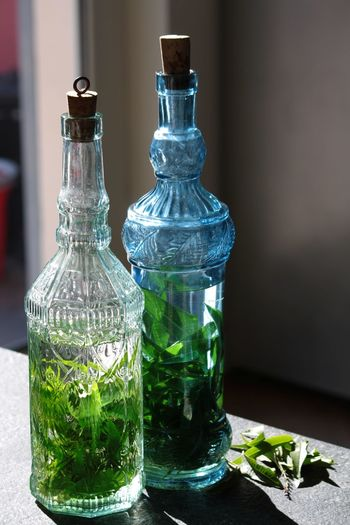 Bottle Bottles Close-up Colored Bottles Freshness Glass - Material Herbs House Indoors  Liqueur No People Ray Of Light Scented Studio Shot Vertical Still Life Share The Meal Still Life Photography light and reflection Handmade For You Food Stories Modern Workplace Culture