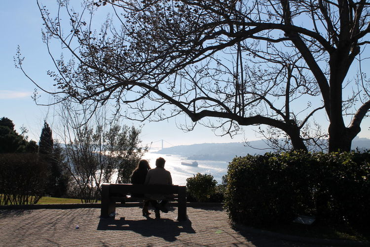 Bare Tree Bench Bestparks Istanbul Istanbul - Bosphorus Istanbul Turkey Istanbuldayasam Istanbullovers Love Lovers Nature Otagantepe Outdoors Panoramic Park Sea