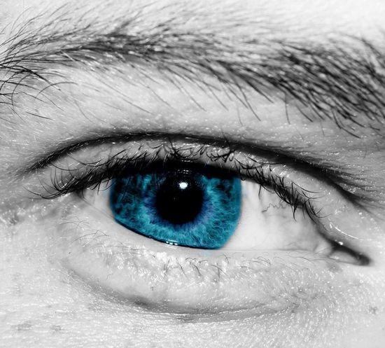Human Eye Looking At Camera Eyesight Part Of Staring Eyelash Portrait Close-up Sensory Perception Extreme Close-up Full Frame Person Blue Eyeball Eyebrow Extreme Close Up Iris - Eye Macro Photography