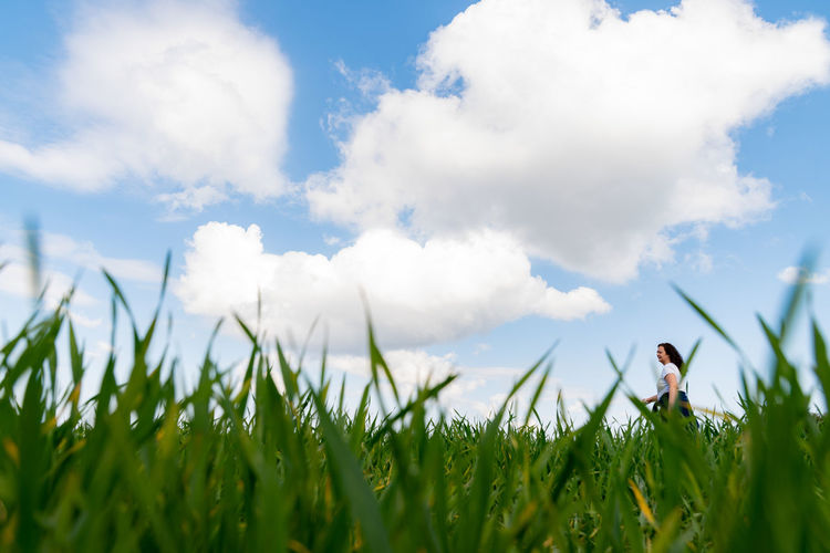 Panoramic shot of grass on field against sky