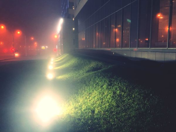 Illuminated Night Lighting Equipment Street Architecture Building Exterior City Green Color The Way Forward Grass Transportation Outdoors Light - Natural Phenomenon Direction Glowing Nature Street Light Built Structure No People Road
