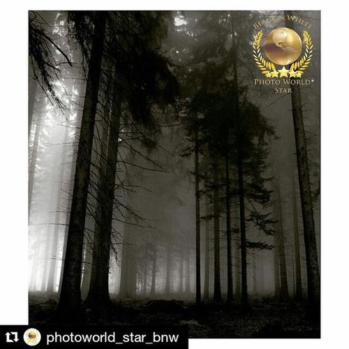 Repost @photoworld_star_bnw with @repostapp ・・・ 📸🌍⭐️ El equipo de @photoworld_star_bnw presenta esta mágica fotografía. The team of @photoworld_star_bnw presents this magical photo. Elegida por @minionmax . ------------------------------------------ . 🎖Felicidades / Congratulations @jeanphillipbrulls ------------------------------------------ . •Les invitamos a visitar su maravillosa galería. •We invite you visit its wonderful gallery. ------------------------------------------ . 📌Seguir @photoworld_star_bnw . 📝Tag Photoworld_star_bnw . 🚫No fotos de internet • No internet photos. 🔄 Kindly Repost Your Photo • Agradecemos Repostear Tu Foto.