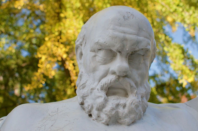 Close-up of statue in park