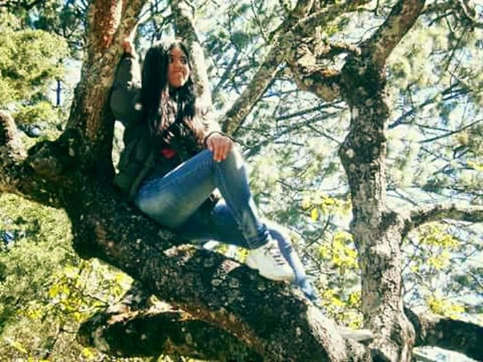 Looking Into The Future Upinthetree That's Me Arboles , Naturaleza