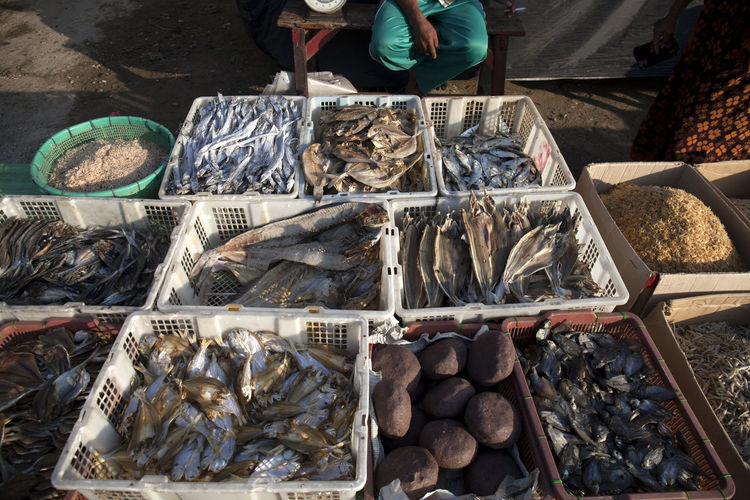 High angle view of seafood in market for sale